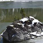 Sneeuweiland in meertje
