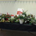kerstbakjes verkoop Ria